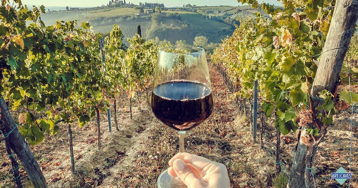 Como identificar taninos nos vinhos