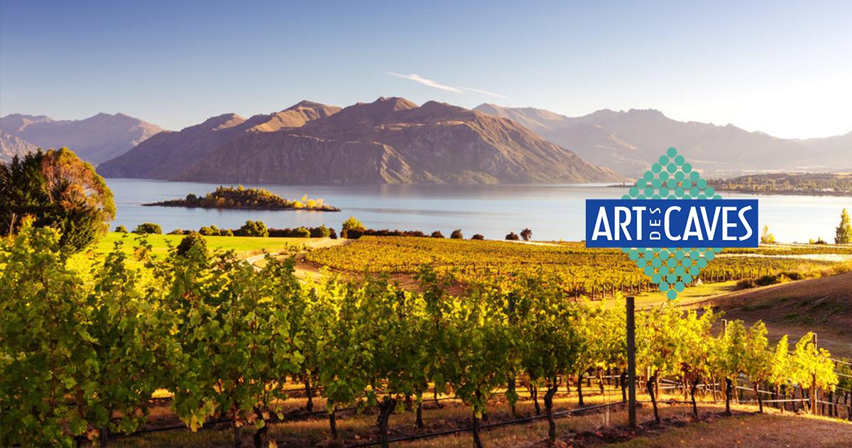 Blog - Os vinhos da Nova Zelândia