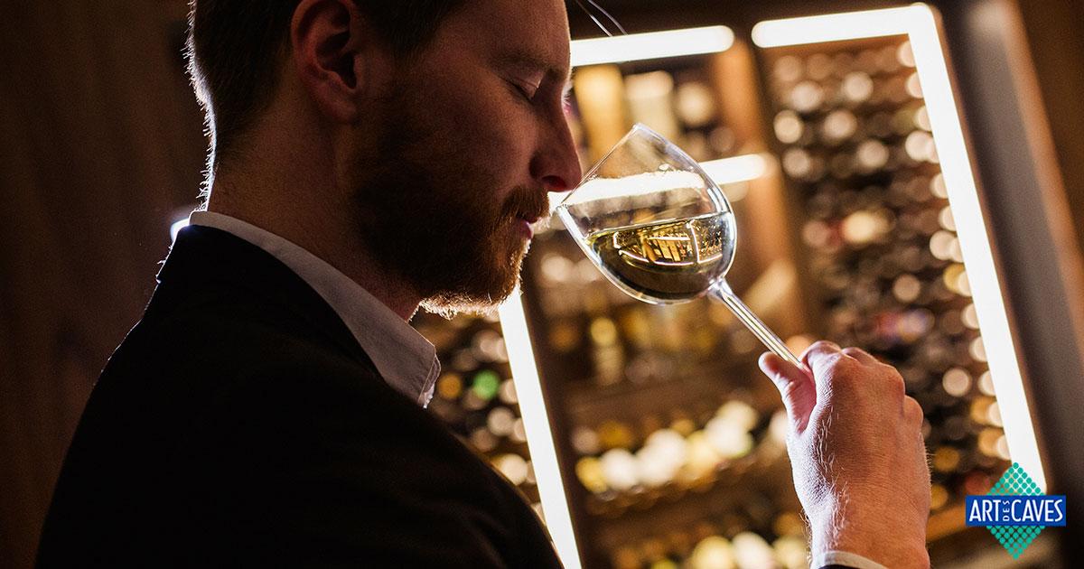 Como escolher um bom vinho para a sua adega climatizada